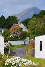 While out walking on the north side of Achill Island, I came across this view down a little laneway.