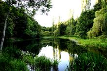 Mini_120201-023457-lake_pheonix_park_loko5