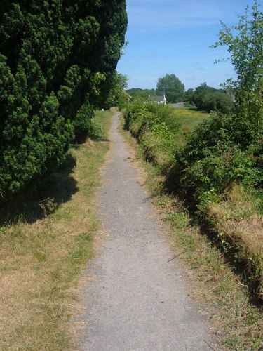 A path near Trim, Co. Meath